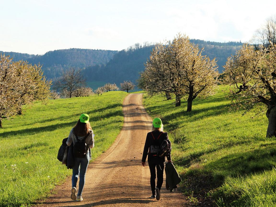 Two young women walk along a dirt track with blossoming cherry trees on both sides