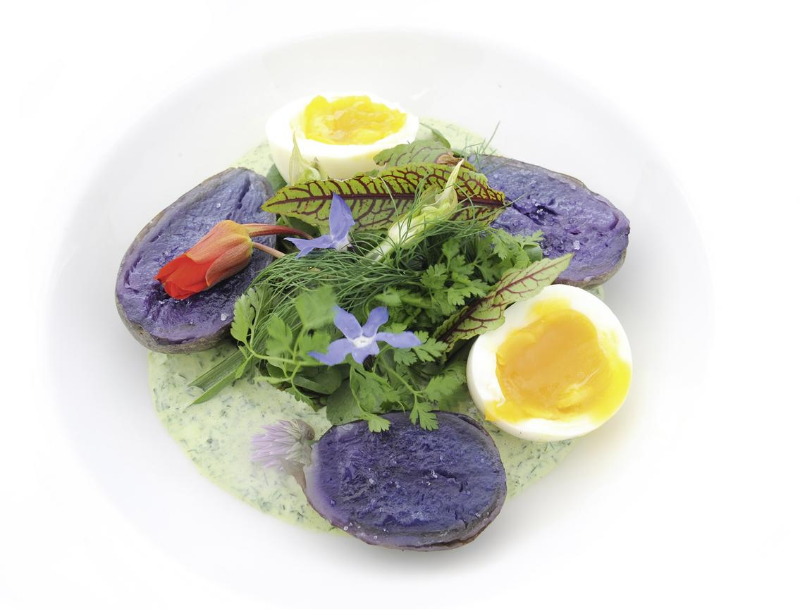Plate with halved blue potatoes, sliced egg, lettuce leaves and a green sauce